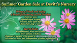 Devitts Sample Ads